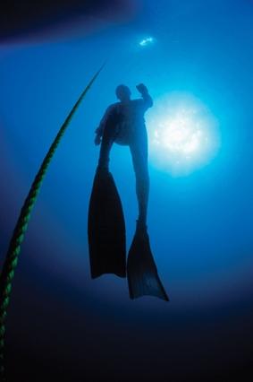 freediver-istock_web