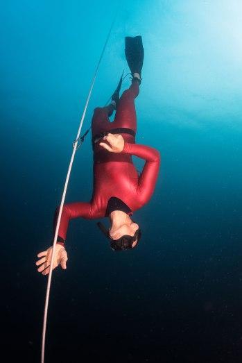 freediver-free-diver_iStock-626817232_WEB.jpg